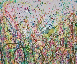 Blue Tit Focus by Jennifer Hogwood -  sized 12x10 inches. Available from Whitewall Galleries